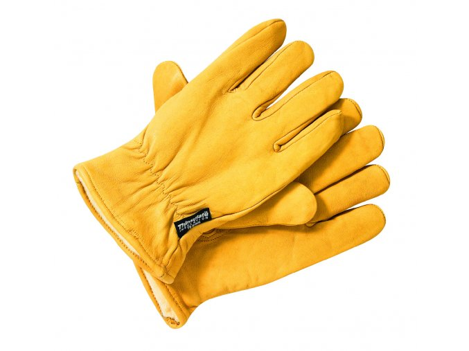 GL0200S Lined Leather Glove TN